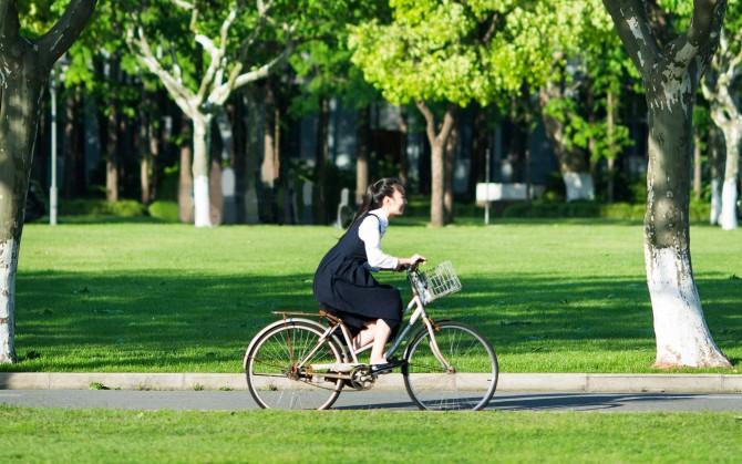 校园单车女孩图片壁纸