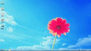 向阳花win7主题下载