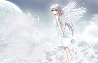 天使的向往win7主题