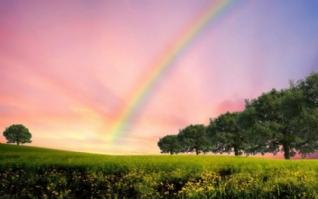 彩虹风景小清新桌面壁纸