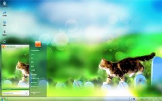 田园小猫win7电脑壁纸