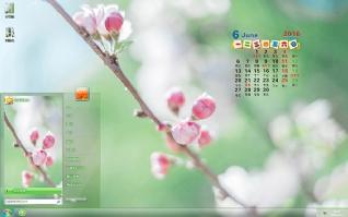 粉色花朵6月日历主题