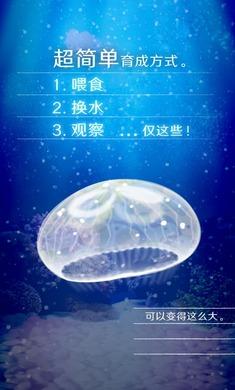 养育水母的治愈游戏安卓版下载