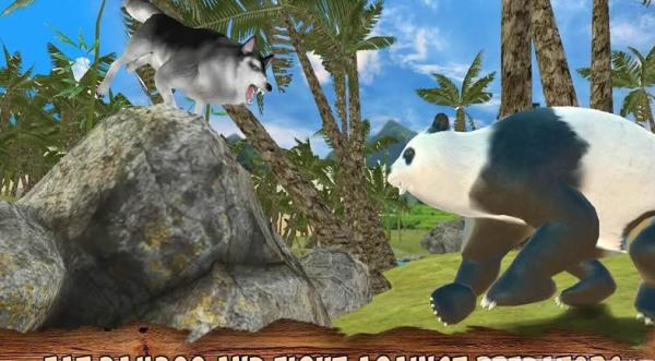 熊猫模拟器3D破解版下载