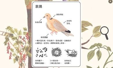 小棕鼠的自然生态百科官方版