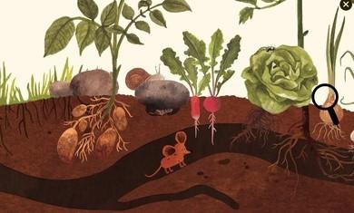 小棕鼠的自然生态百科最新安卓版下载