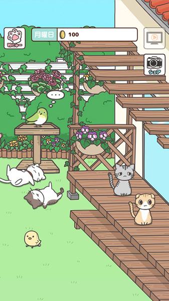 猫咪饲养日常手游安卓版下载