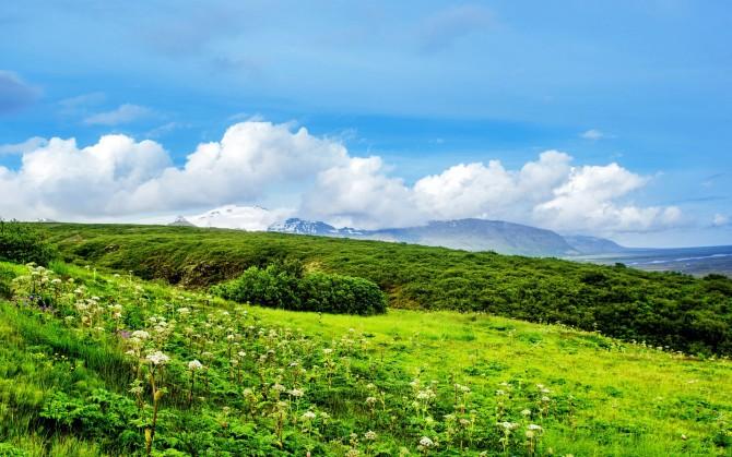 蓝天白云草地电脑桌面风景